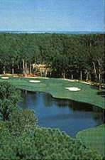 Palmetto Hall Golf Course